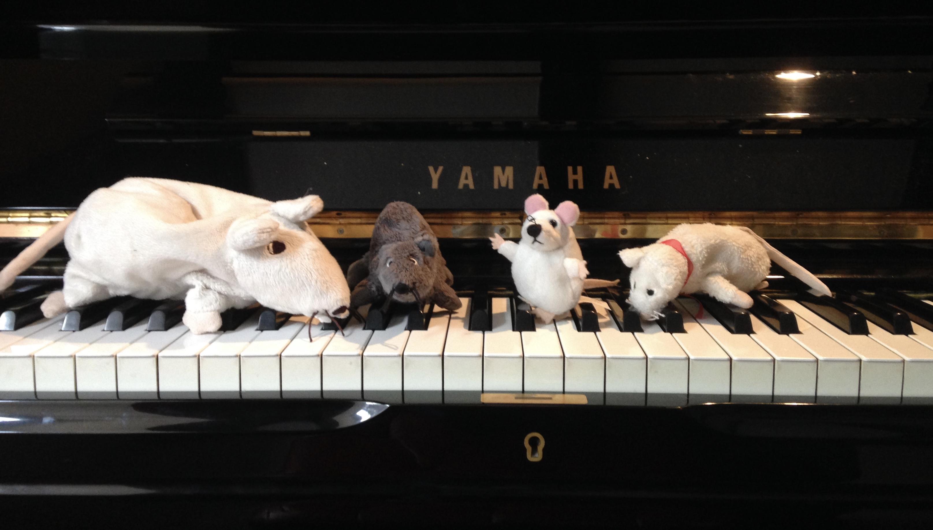 The Talking Mice
